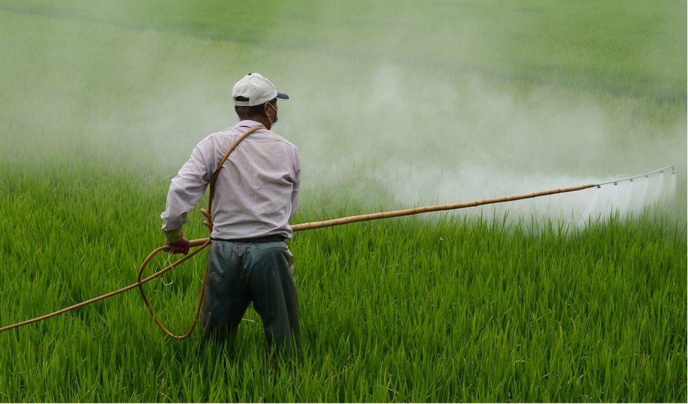 What Is an Organic Herbicide?