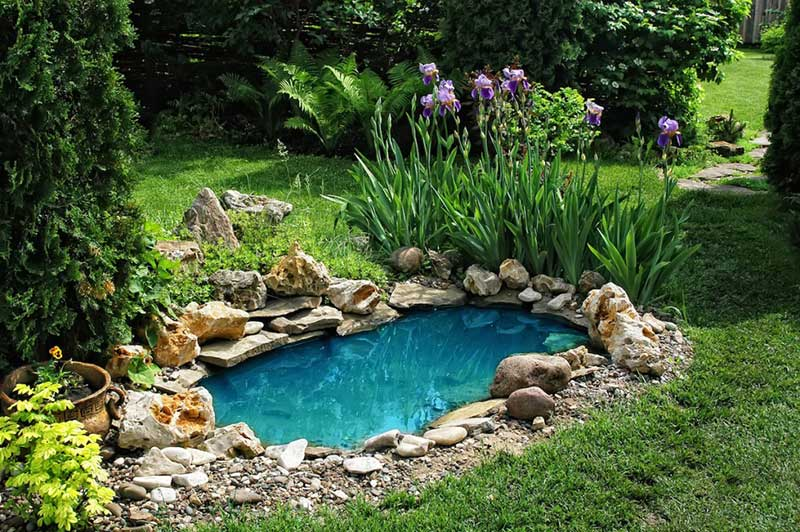 Lawn Decor Tips for Chicago Homeowners