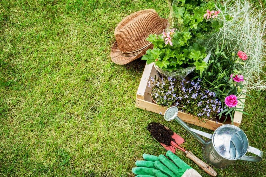 The Benefits of Professional Landscape Maintenance for Your Home