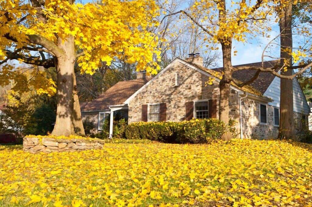 Autumn Yard Work Safety Tips