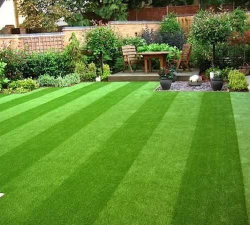 Lawn Care | Eden