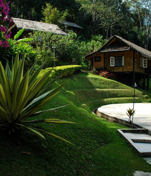 Landscape design near the pool image