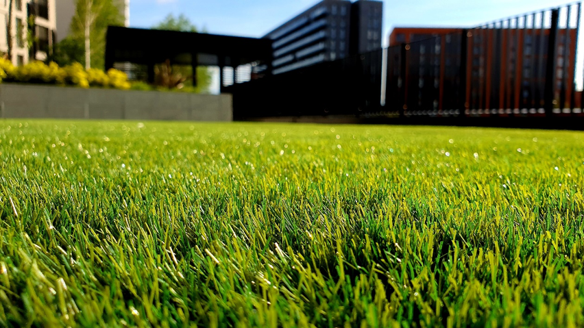 What Is the Importance of Aerating Your Lawn?