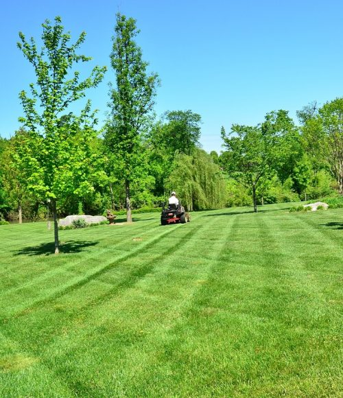 Lawn mowing tractor