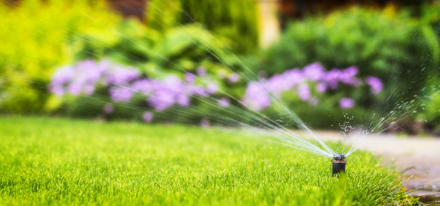 Effective Lawn Watering Tips for Chicago Homeowners