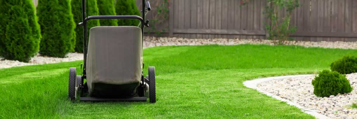 How Much Does Lawn Care Cost Per Month?