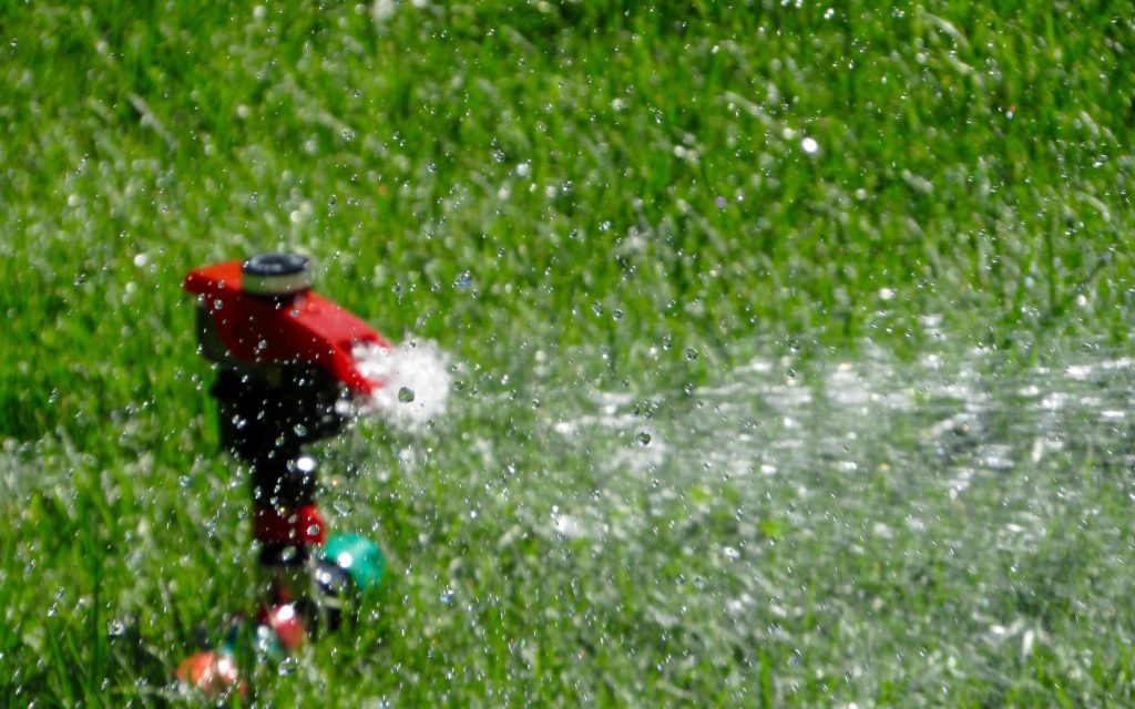 Summer Watering Lawn Care Tips