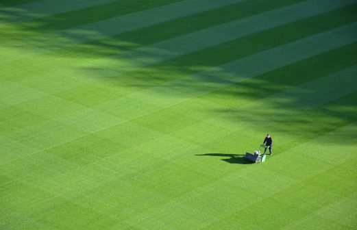 Lawn Benefit From Verticutting