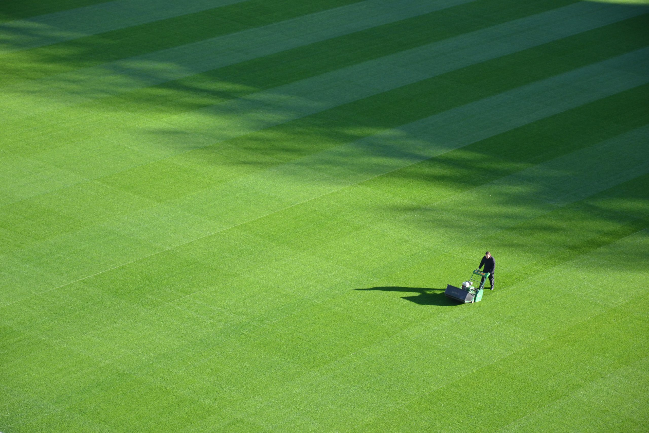 How Can Your Lawn Benefit From Verticutting?